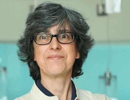 SPAVC apresenta nova Comissão Científica