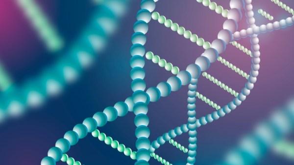 gene - cardiopatia