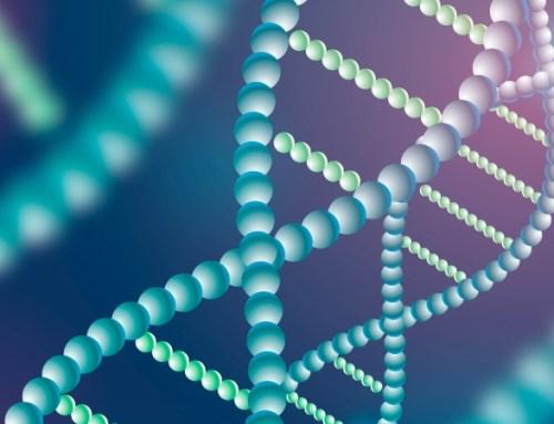 Novo gene associado ao desenvolvimento de cardiopatias congénitas, confirma estudo