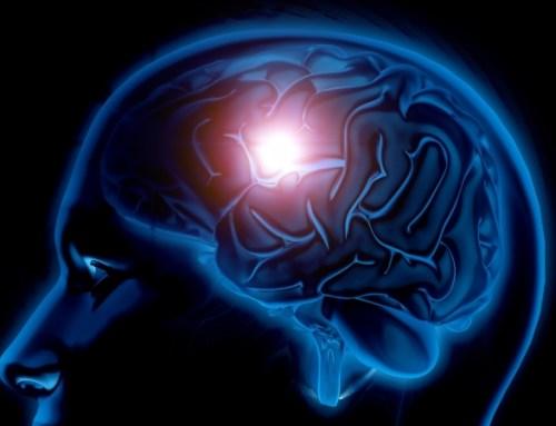 Novo mecanismo eficaz na proteção do cérebro contra os efeitos da hipoxia