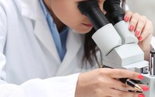 hipertensão - leptina investigação