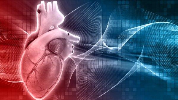 pós-eam - músculo cardíaco