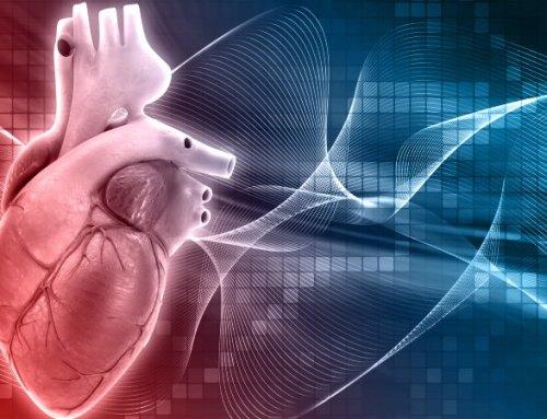 Pós-EAM. Estudo confirma possibilidade de converter tecido cicatricial em músculo cardíaco