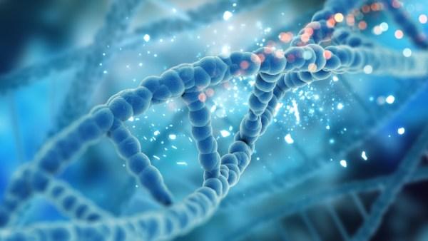 morte súbita - genética