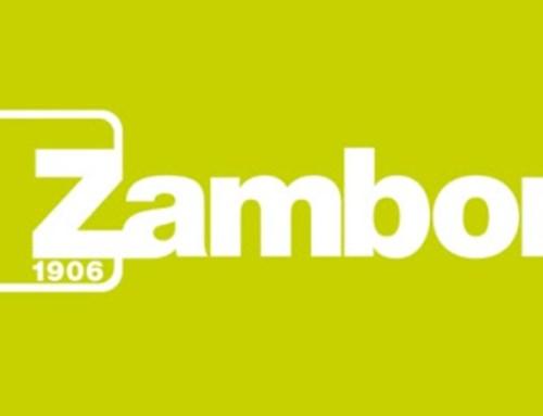 Zambon lança novo portal sobre a cistite