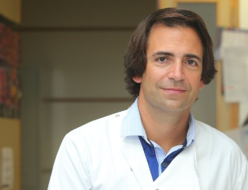 LMA. Nova imunoterapia com origem portuguesa está a ser testada nos EUA