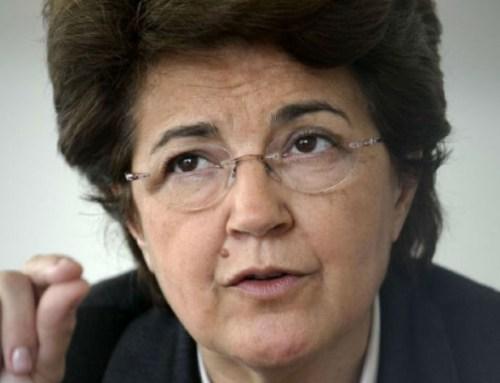 Cruz Vermelha. Governo indica Ana Jorge para presidente mas conselheiros vão travar nomeação