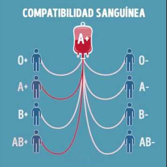 compatibilidade.jpg