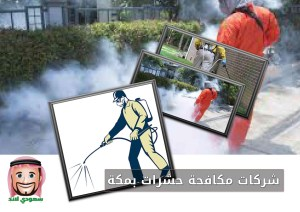 شركات مكافحة حشرات بمكة