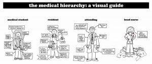 تسلسل المهام في دراسة الطب