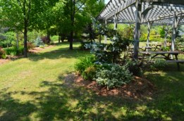 Rotary Perkins Park.3