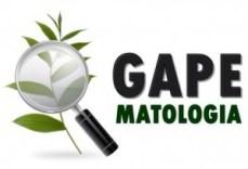 logo-gape
