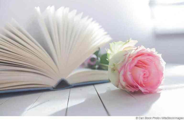 Warum faszinieren uns Liebesromane?