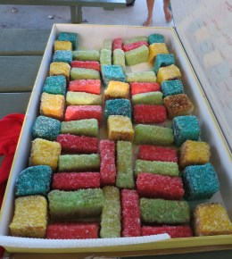 Multi-coloured lamingtons