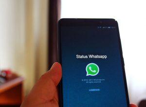 Status Whatsapp Teman Tidak Muncul