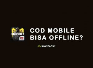call of duty offline
