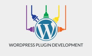 WordPress Plugin Development Tips