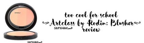 Review: too cool for school Artclass by Rodin Blusher