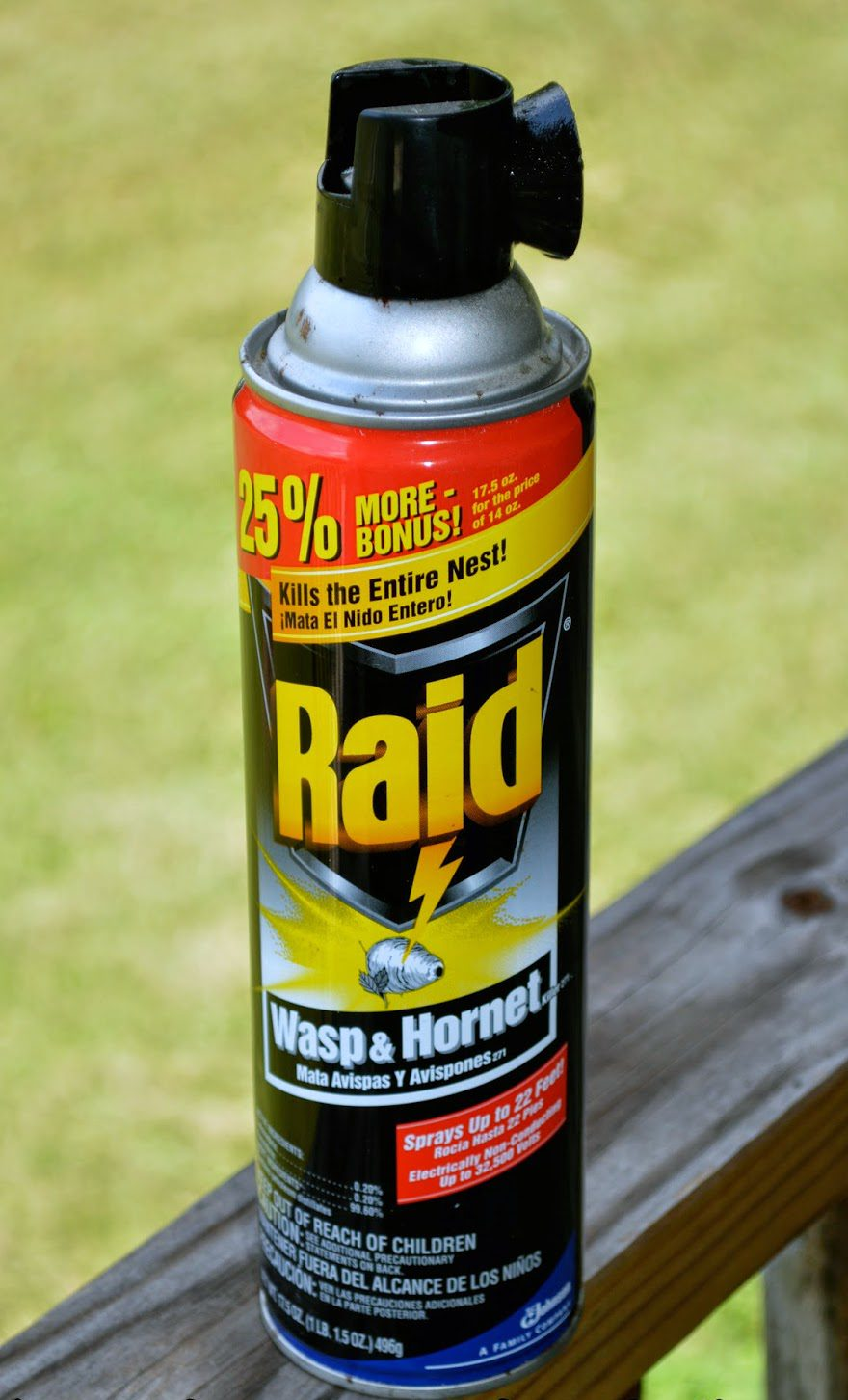 Wasp Spray Home Depot