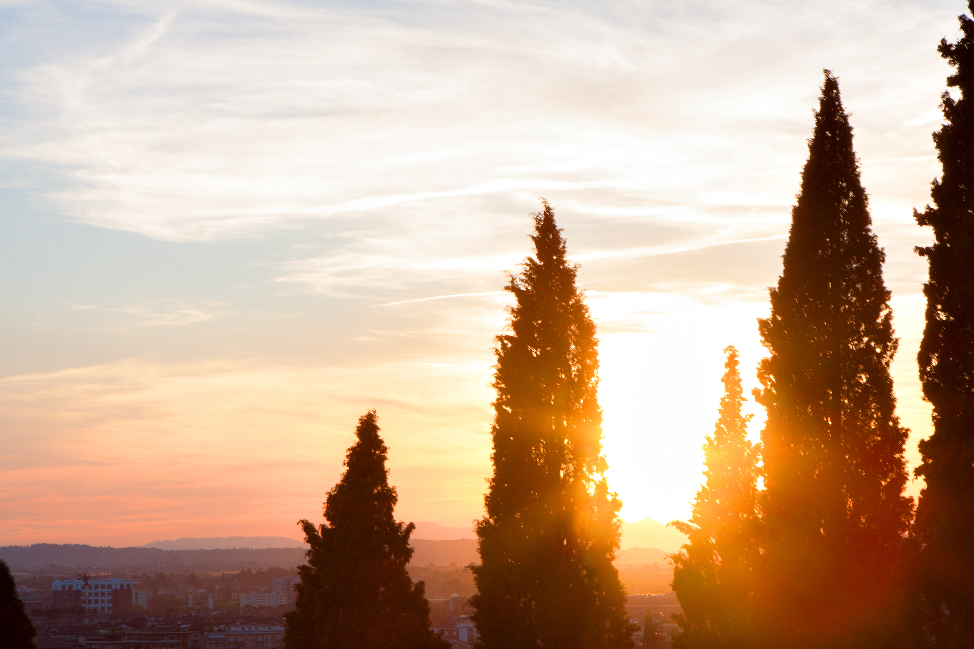 Verona, Italy Sunset with Cypress Tree Silhouette