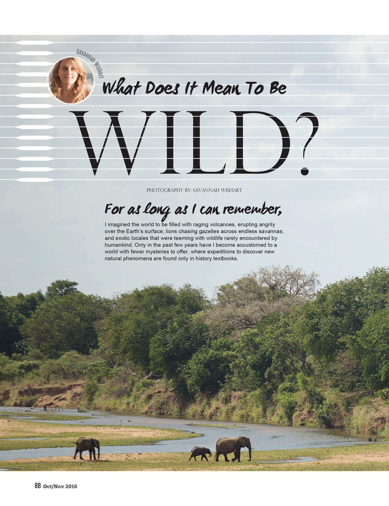 What does it mean to be wild? Article for Paleo Magazine on Kruger National Park