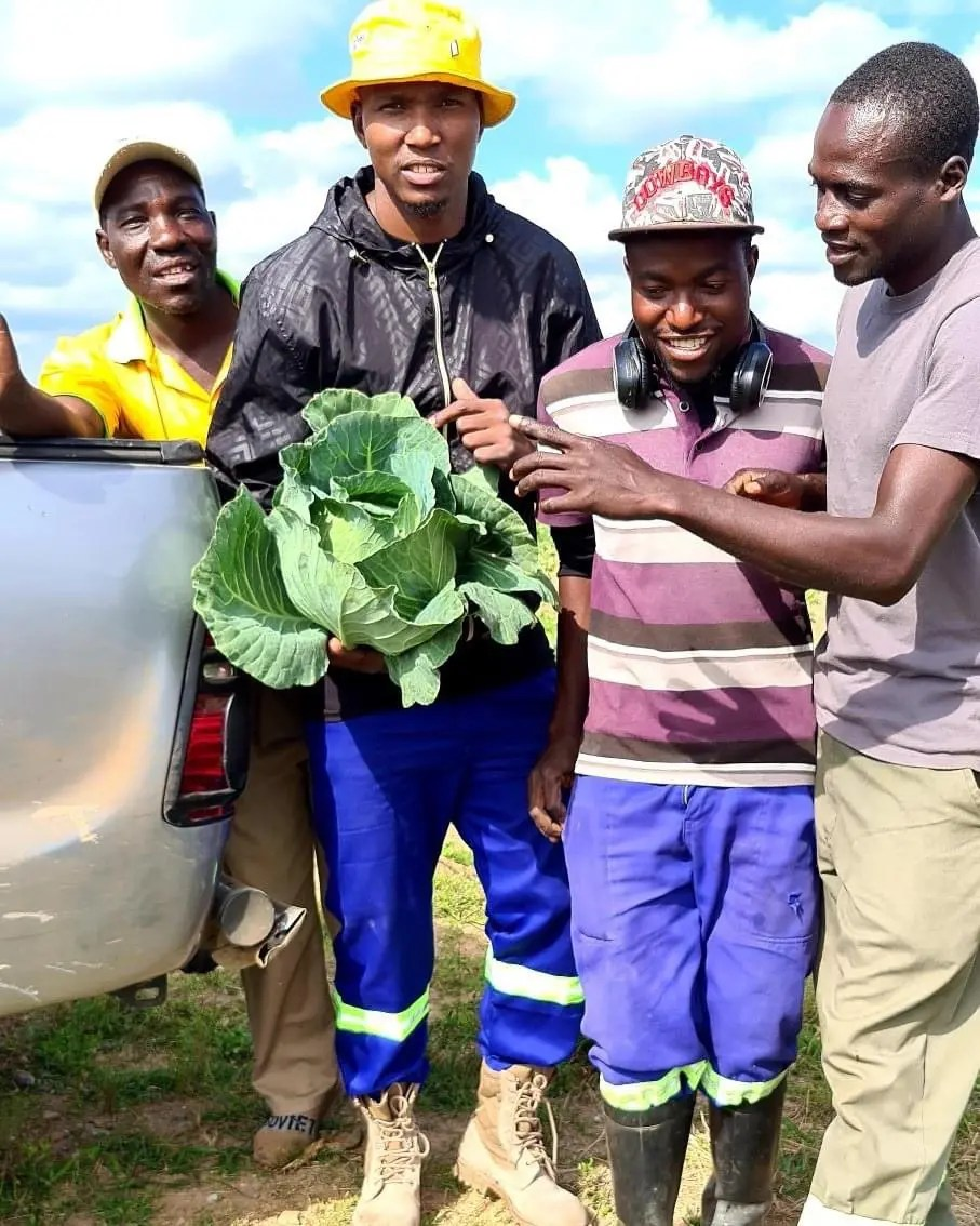 Famous Zimdancehall artist Freeman impresses his fans with pictures of him in a cabbage field