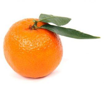 citrus-2393_640