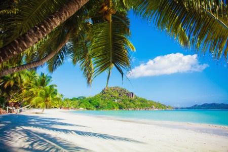 Vacation summer holidays
