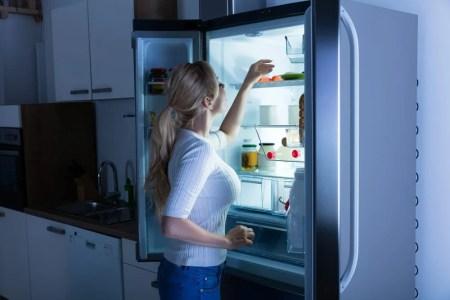 refrigerator india