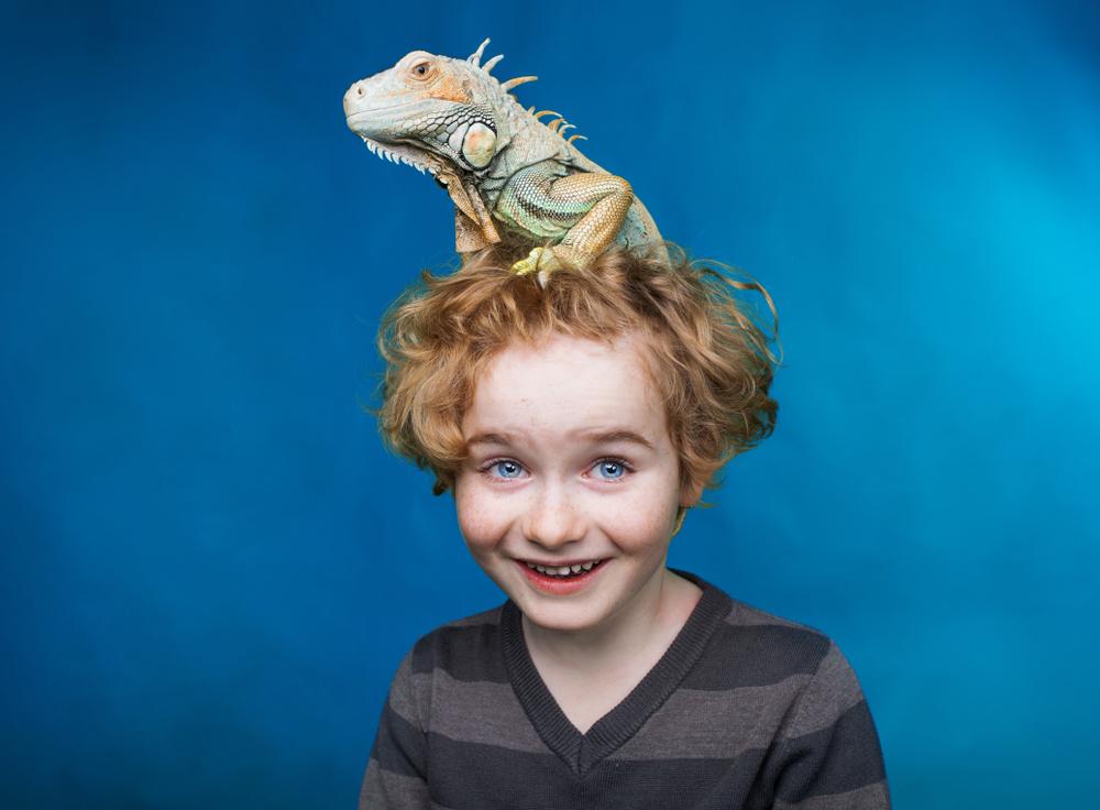 best reptiles