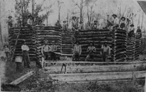 raising-a-log-cabin