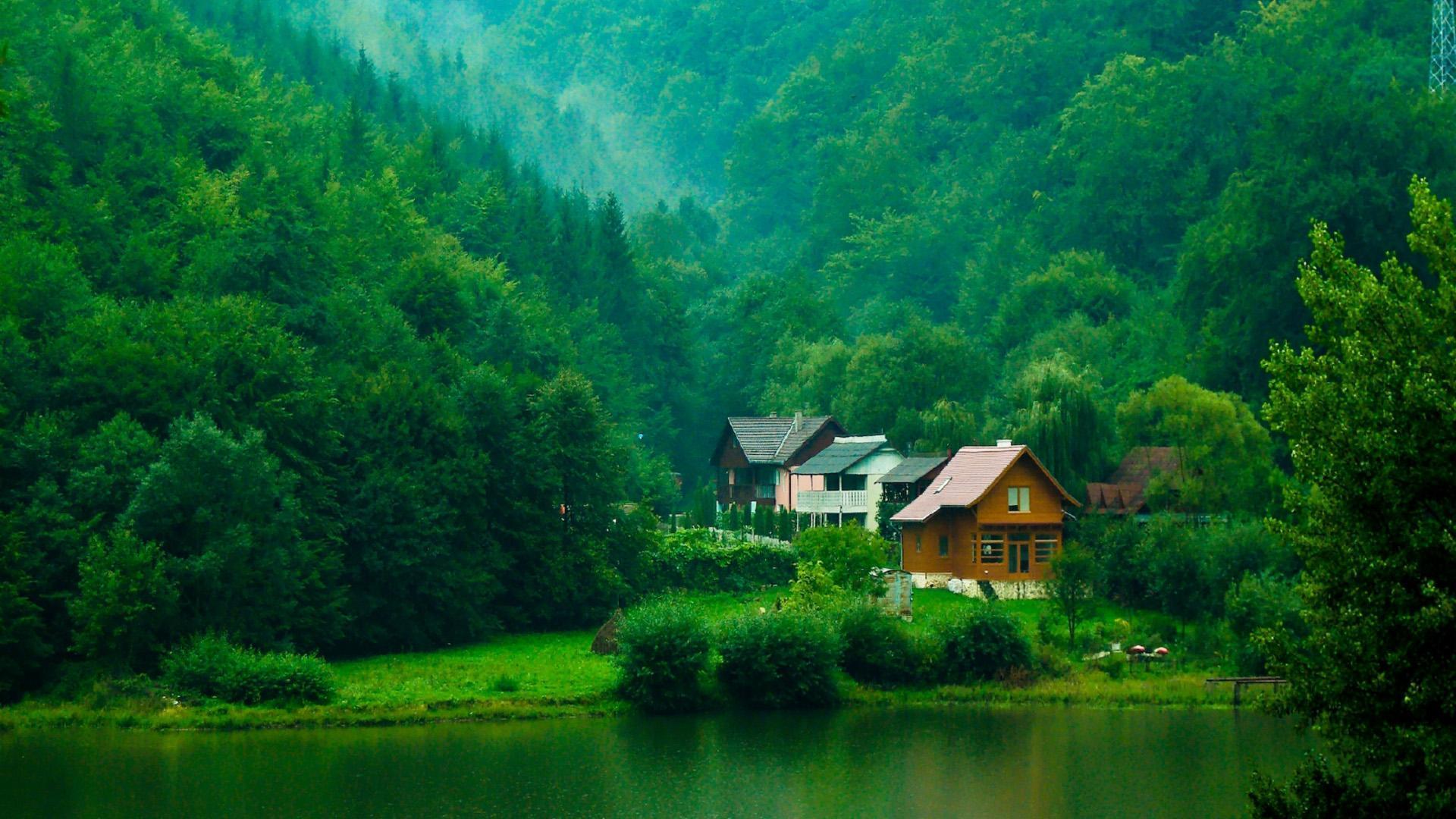 Indonesian natural green