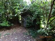 Hove Rec cottage 14