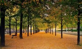 retirement-retirement planning-golden years