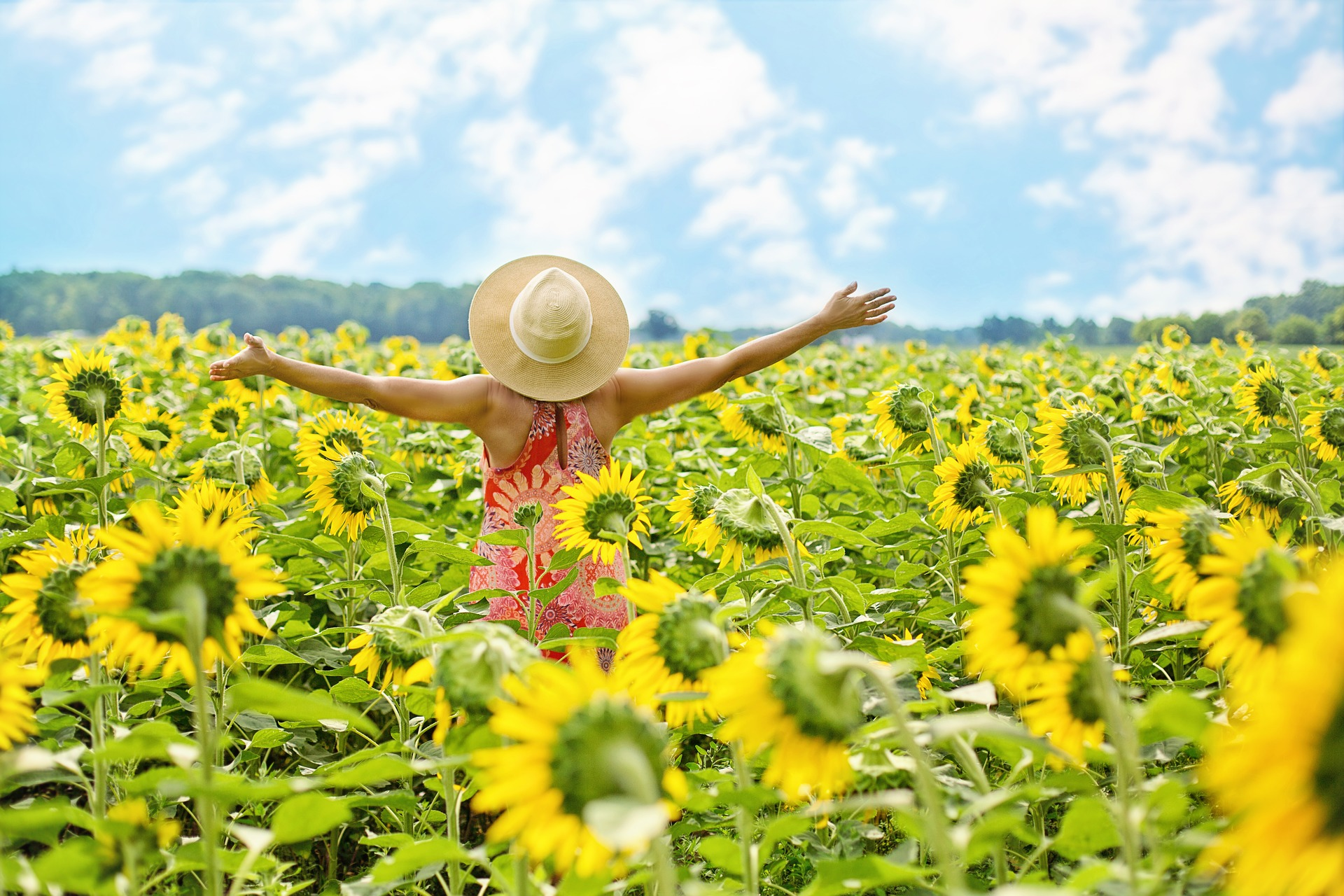 A woman standing in sunflower field-where to live in retirement