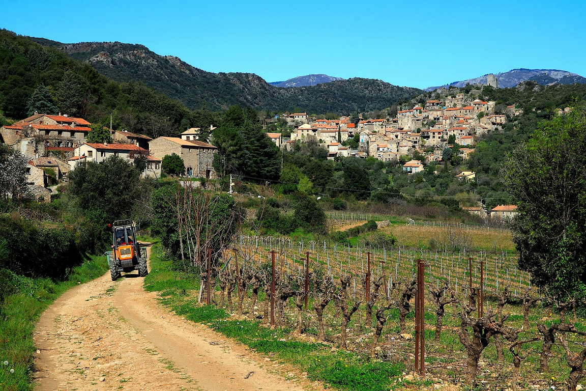 mountain village - vineyards-tractor-move abroad in retirement