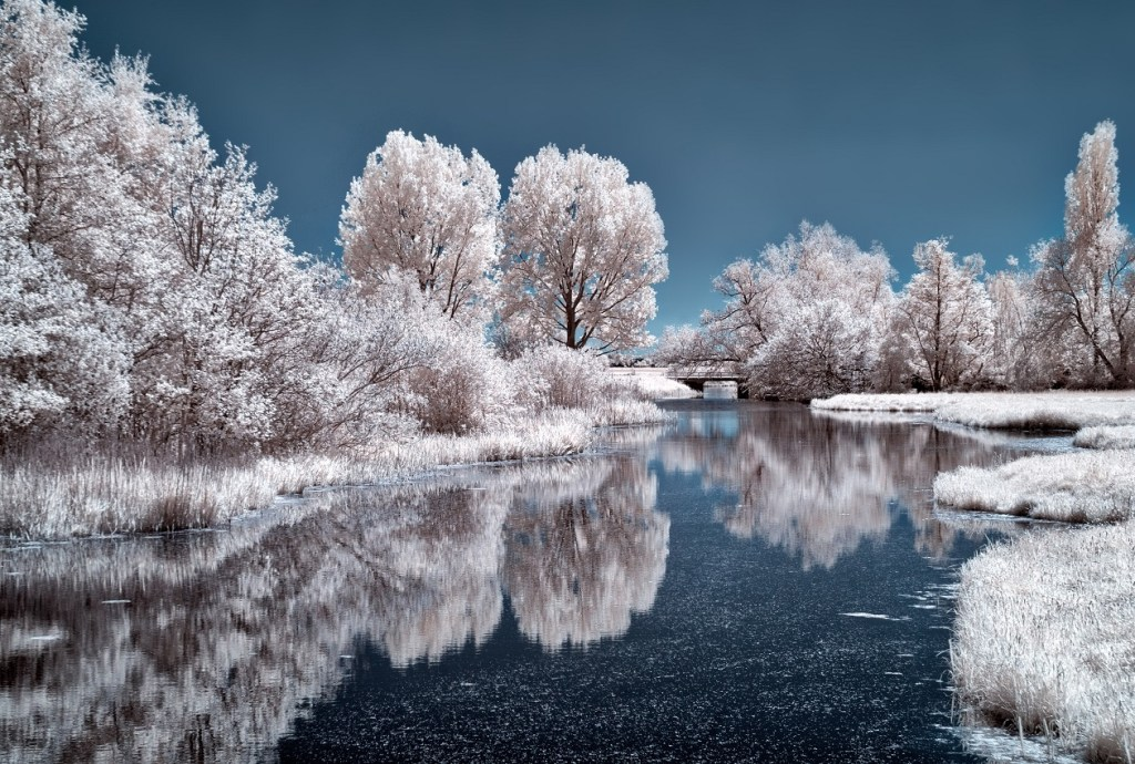 lake-snow-trees - choosing a place to retire