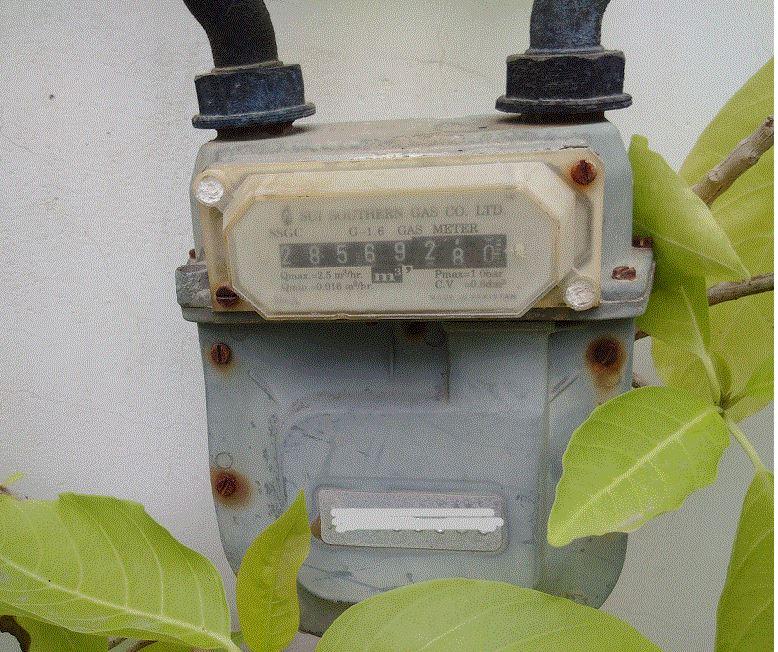 Gas meter reading