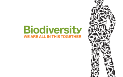 National Biodiversity Action Plan Public Consultation