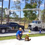 SaveMore Tree Service - Best Tree Service, Tree Trimming, Tree Removal and more in Loxahatchee, Wellington and Royal Palm Beach - Call 561-513-7883