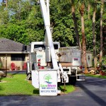 Storm-preparation-Tree-Trimming-Tree-Removal-Cleanup-Pruning-Wellington-Savemore-Tree-Service-Bucket-Truck