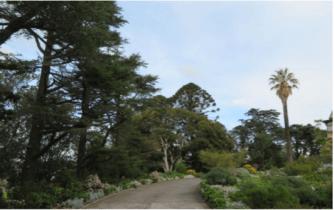 north park estate grounds