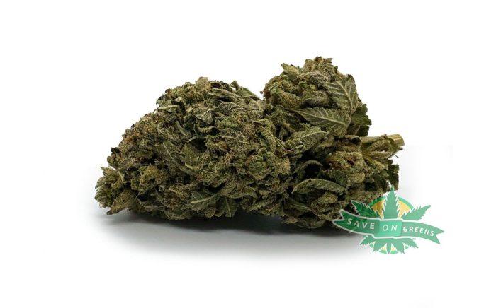 Gods Green Crack AAA Buy weed online canada