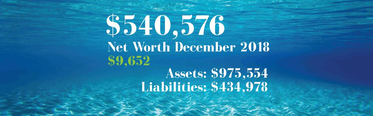 Net Worth: 2018-12-01