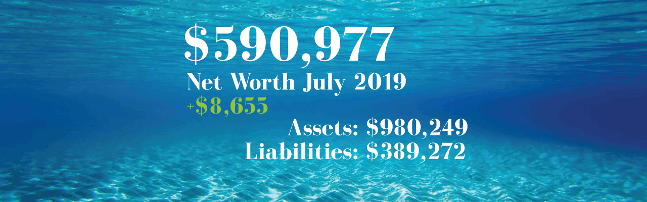 Net Worth: 2019-07-01
