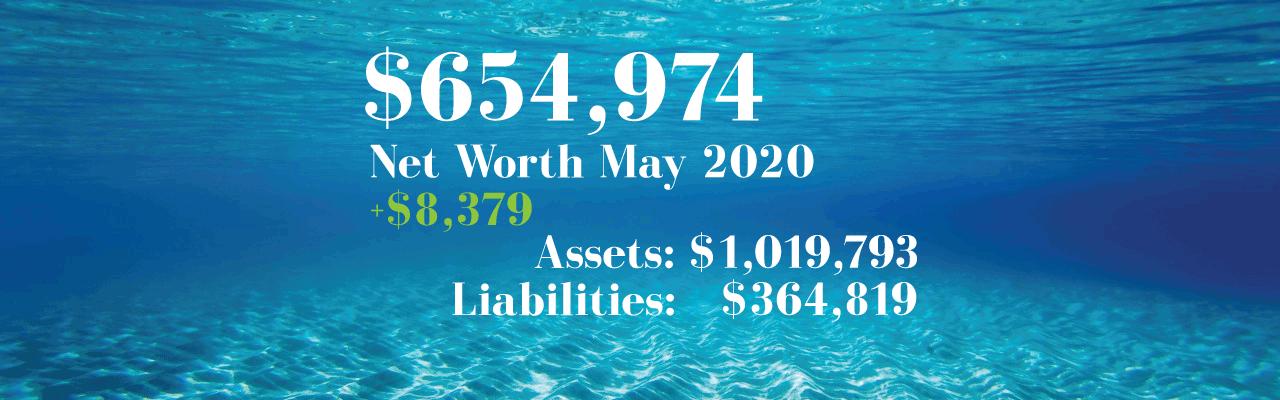 Net Worth: 2020.05