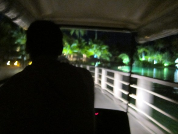 Blurry picture from our golf cart ride