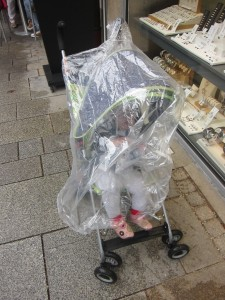 Our cheap stroller plus a disposable poncho did the trick for the rain