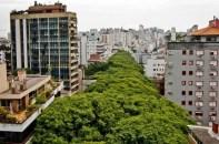 Rua-Gonçalo-de-Carvalho_5