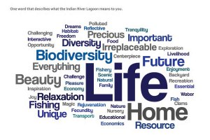 Wordcloud: What the Indian River Lagoon Means to You